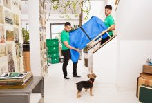 Photo of Tips to identify the geniuses of Moving companies