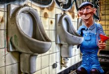 Photo of Here is How To Fix Clogged Toilets & Leaky Pipes