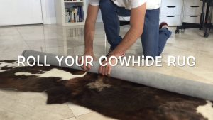 Removing Stains from Your Cow Hide Rugs