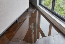 Photo of What You Can Do If You Notice A Leaky Window?